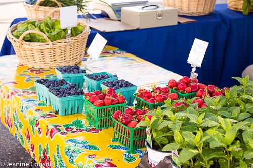 Farmers Market, Cape Cod